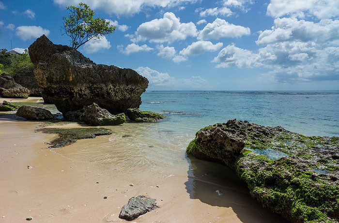 Verstreute, bewachsene Felsbrocken am Pantai Padang Padang bei Uluwatu, Südbali. Foto: Klaus Schoerner