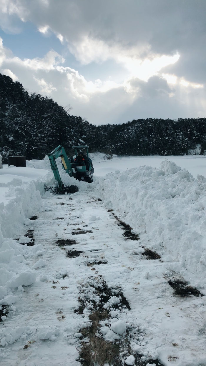 #丹後 #雪景色