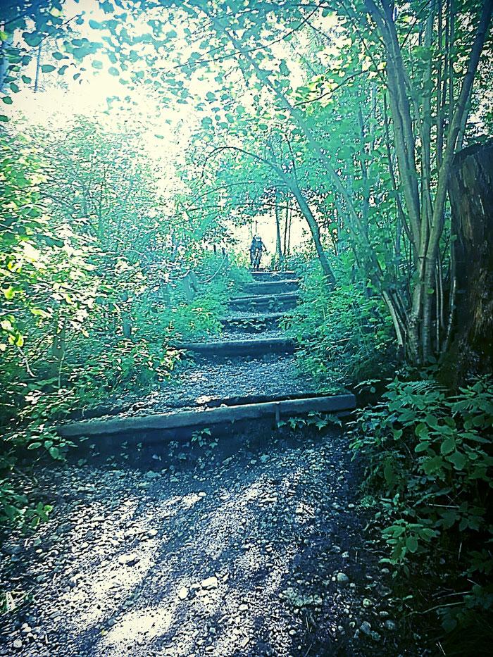 Stufiger Trail
