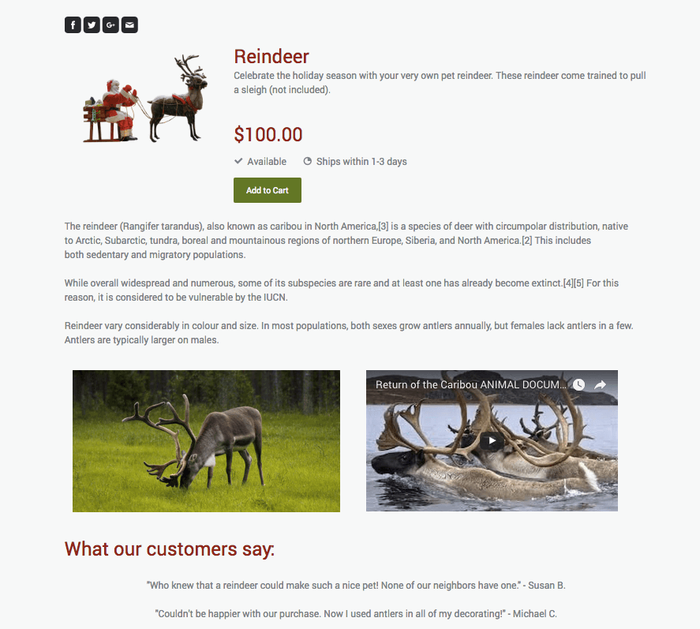 Jimdo Online Store Product Page Example