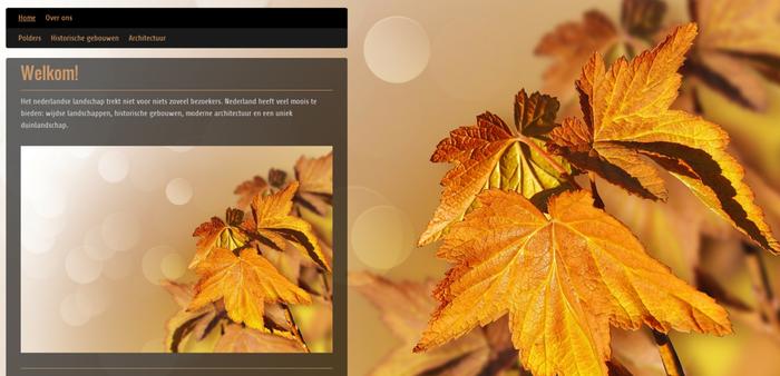 kleurgebruik fotowebsite