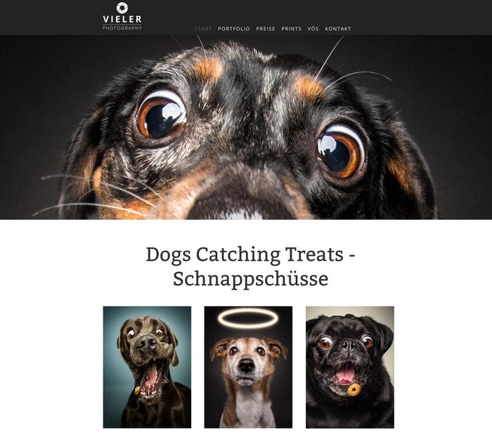 Die Webseite von Christian Vieler: auf den Hund gekommen!