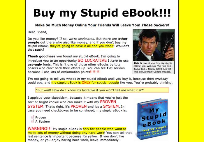 Bitte nicht nachmachen: Die Landingpage von buymystupidbook.com zeigt, wie es nicht geht.