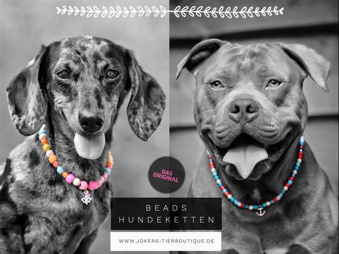 Beadshundeketten Hundeketten Beads Hundeboutique Luxushalsband ausgefallenes für Hunde Hundeboutique schönster Hundeladen