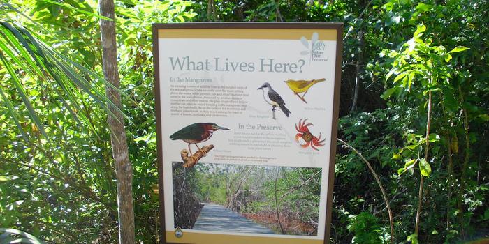 Leon Levy native plant preserve Bahamas
