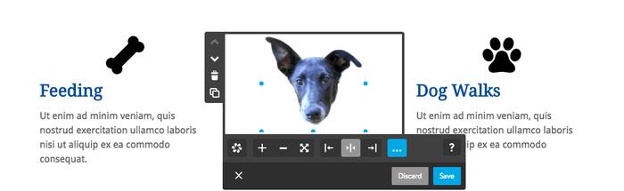 modifiche specifiche immagini alternative Photoshop