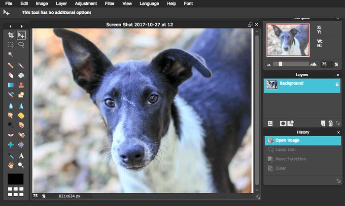 Pixlr modifica immagini sito web