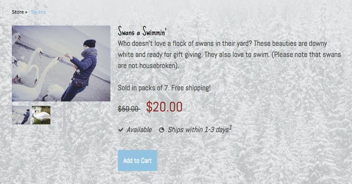 Producto con precio rebajado en una tienda online creada con Jimdo.