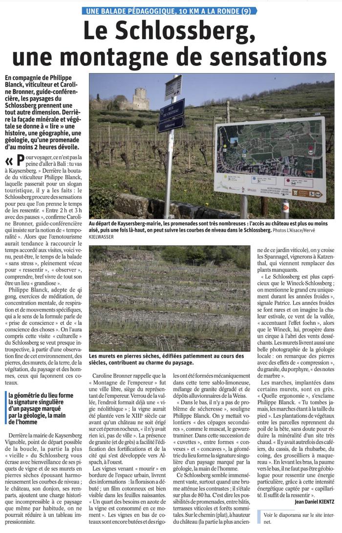 Le Schlossberg, une montagne de sensations - Article de Jean-Daniel Kientz, Dimanche 25 Avril 2021 , Les Dernières Nouvelles d'Alsace