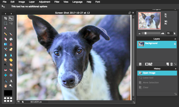 Voici une capture d'écran de l'interface Pixlr, outil gratuit à utiliser directement depuis votre navigateur.