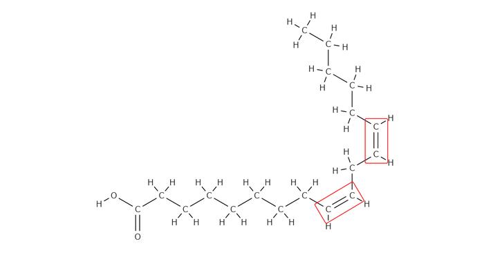 リノール酸の構造式