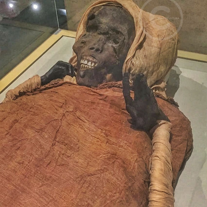 Mummia del faraone Seqenenra Tao, Royal Mummies Hall - Museo Egizio Il Cairo