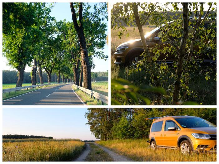 Von Coswig Richtung Beelitz, eine traumhaft schöne Gegend!
