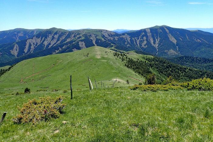 Le prochain mamelon s'appelle Monte Torcedor (1614m).