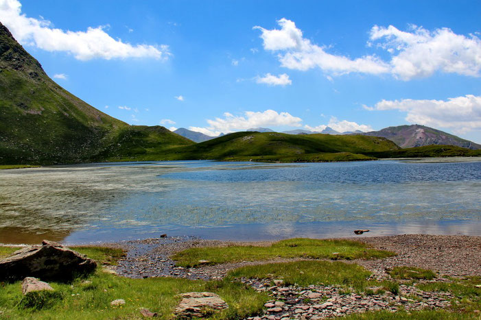 Joli lac, malgré ses herbes.