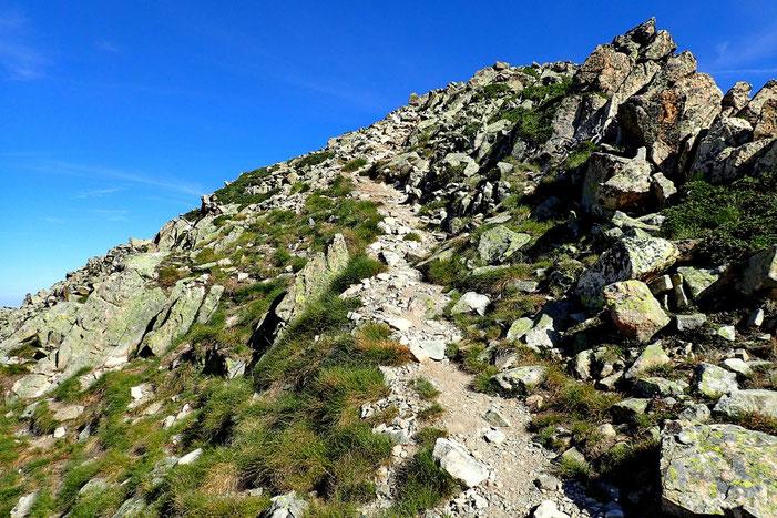 Arrivée sur la crête, le sommet n'est plus très loin.