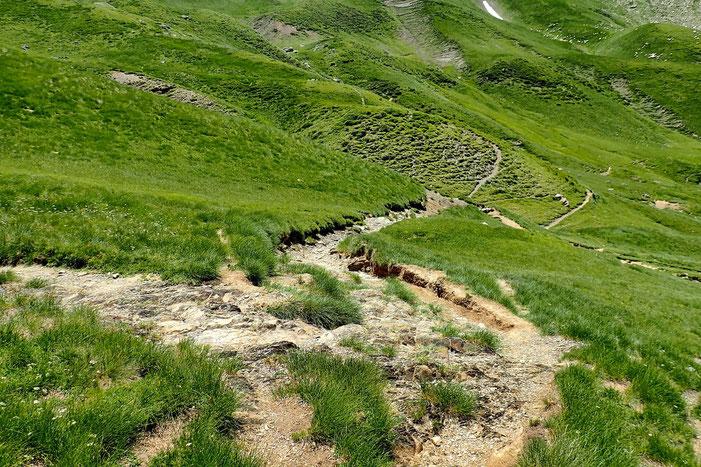 Et retrouve un sentier qui va rejoindre le sentier du Col de Suzon.