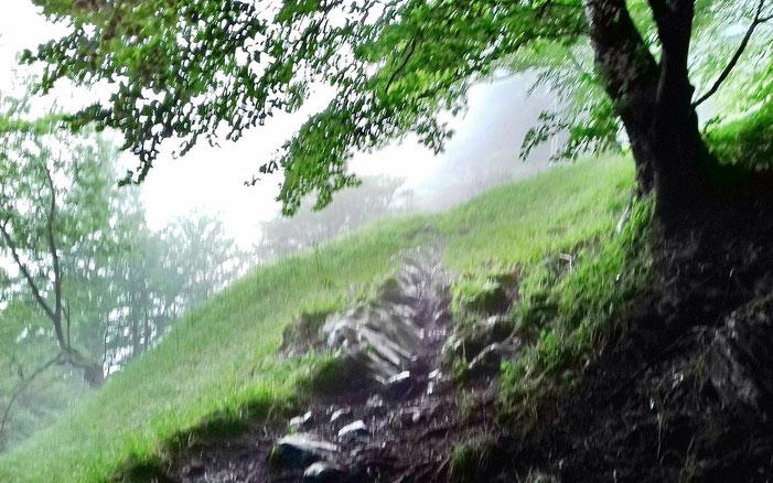 La montée jusqu'au Mail Arréou est plutôt tonique. La brume est scotchée au relief.