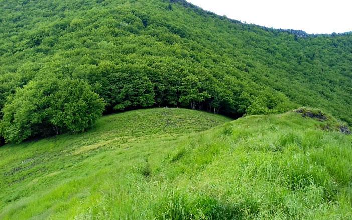 La montée va se faire dans la forêt.