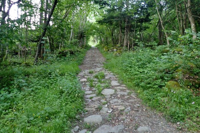 Le chemin de Ristou.