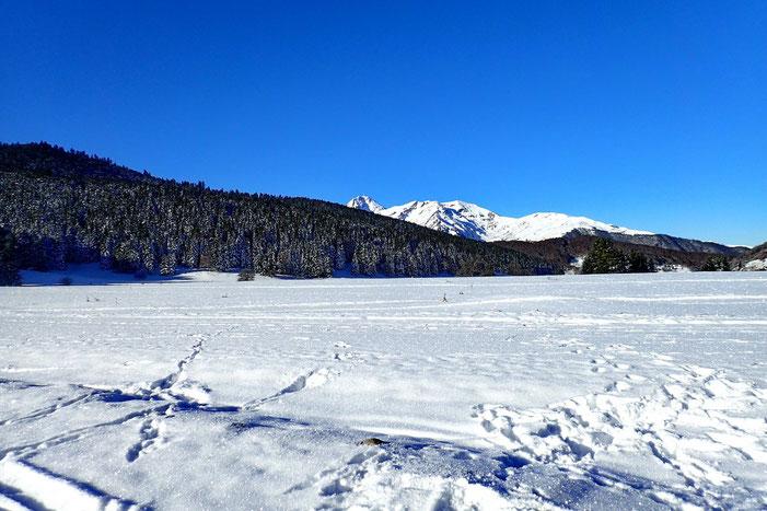 Bel enneigement pour un début décembre.... Au fond le Pic du Midi de Bigorre.