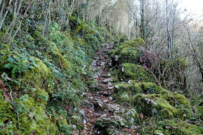"""Le chemin devient plus """"montagnard""""..."""