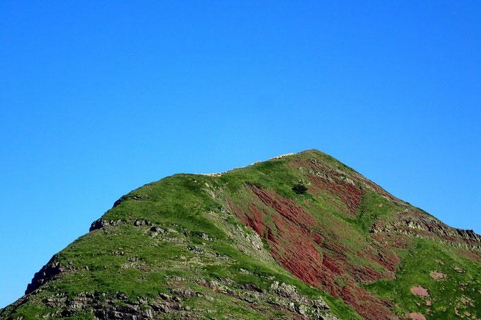 A ma gauche, sur le Pic de Mayou (2092m) des moutons.