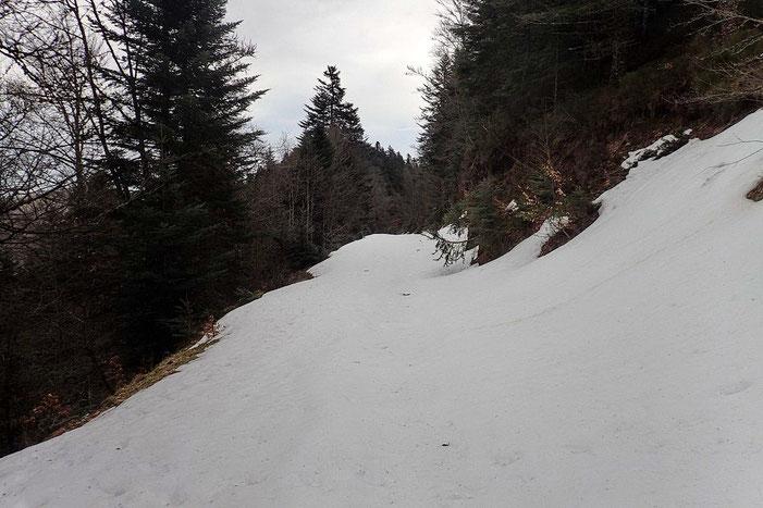 Alti = 1300 m. La neige est très molle. Il faut sortir les raquettes...
