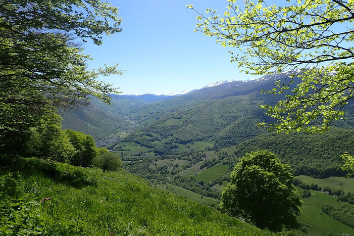 La vallée de Campan.
