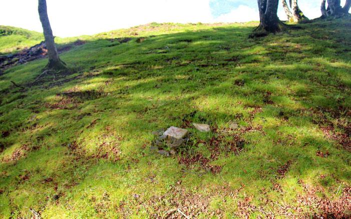 Au Pène de Souquète (1420m), simplement marqué par une borne en béton.