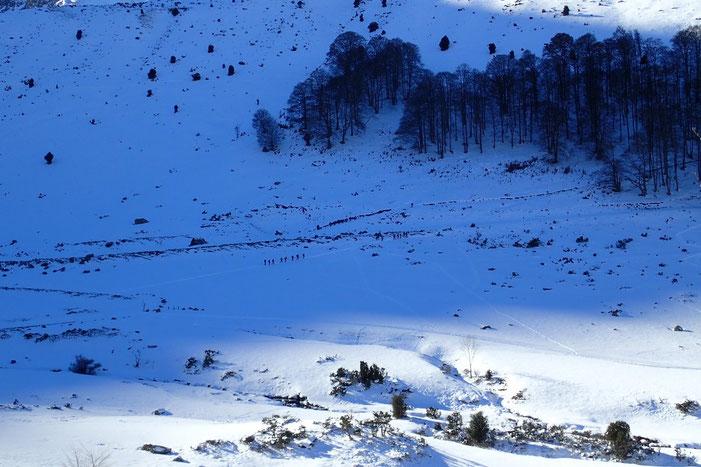 Le petit vallon où coule l'Artigous.