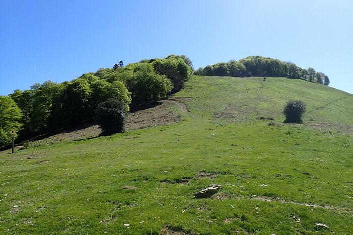 La montée vers le sommet du Monné.