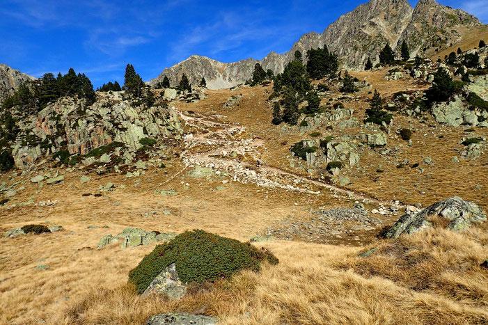 Le chemin qui monte vers le Lac Supérieur (je vais rester raisonable) et le Col de Bastanet. Ce sera pour une autre fois.