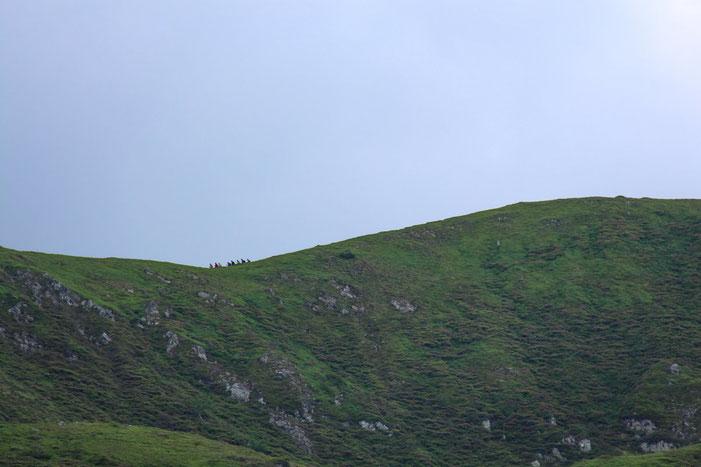 Les randonneurs du Pic du Lion ont décidé malgré le temps de faire la crête de la Coume du Lion.