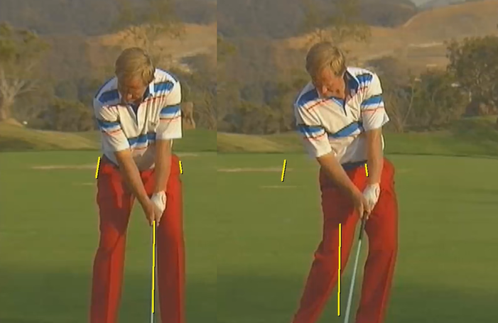 Examples of Pro Golfer Swings