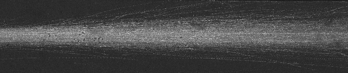 Dispersion of a jet of microswimmers along a plug flow. The dynamics of such phenomenon will tell us about fine effects due to hydrodynamics interactions.