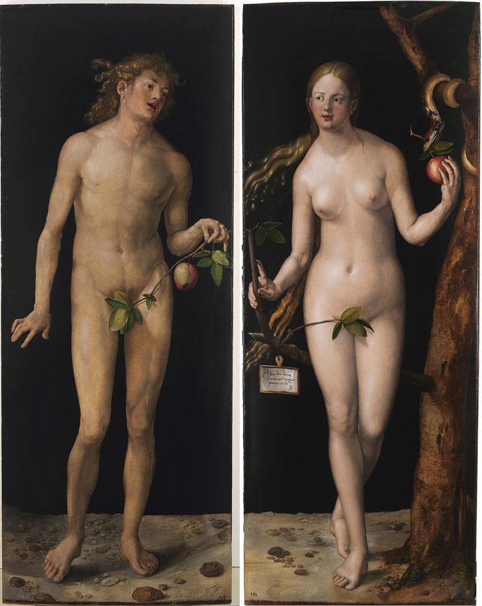 《アダムとイブ》,1507年