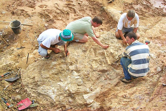 Le chantier de fouilles de dinosaures à Campagne sur Aude