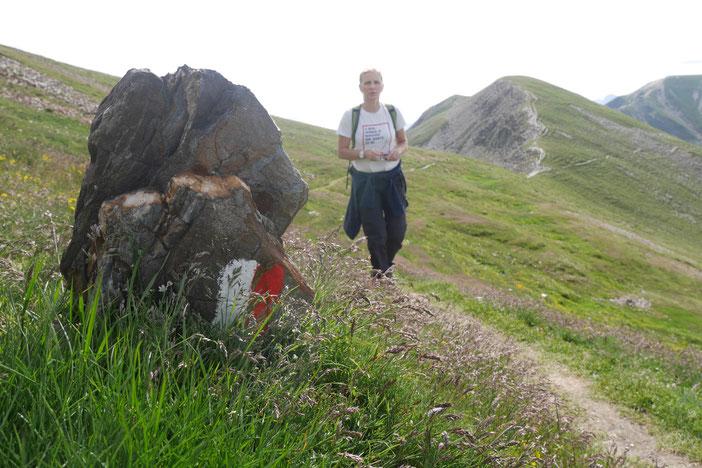 beim wandern in Südtirol