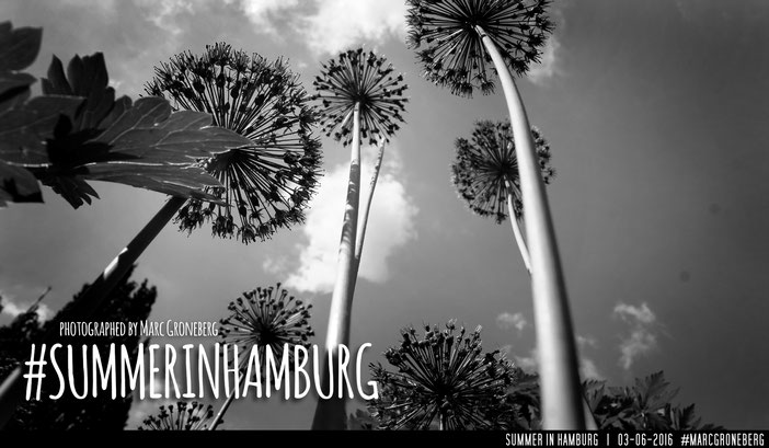 #summerinhamburg | Photo & Edit © by Marc Groneberg