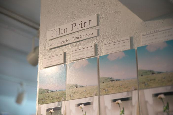 店内の壁にFilmPrintの表示。その下に幾つものパターンでPrintされた見本。