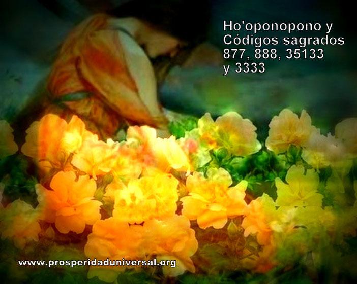 HO'OPONOPONO - Códigos Sagrados Lo Siento 877-  Perdóname 888- Te Amo 5133 y Gracias 3333 - PROSPERIDAD UNIVERSAL  EJERCITACIÓN GUIADA DE ACTIVACIÓN- www.prosperidaduniversal.org