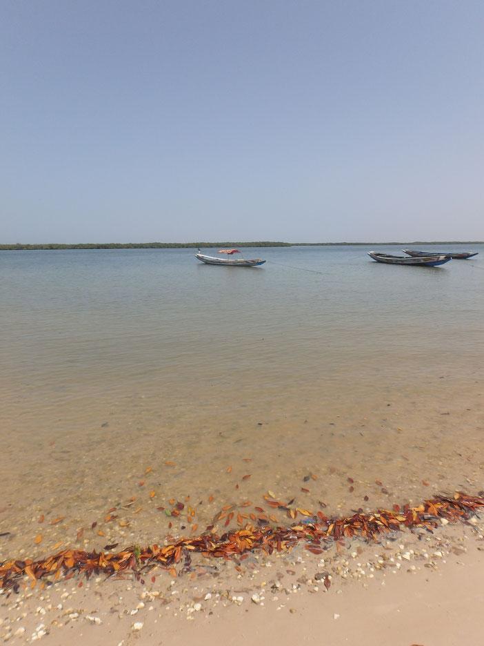 Mar Lodj, Sine-Saloum delta