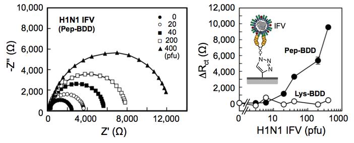 図5 インピーダンス測定(EIS)により、IFVの検出が20-500 pfuで可能であった(文献2)。