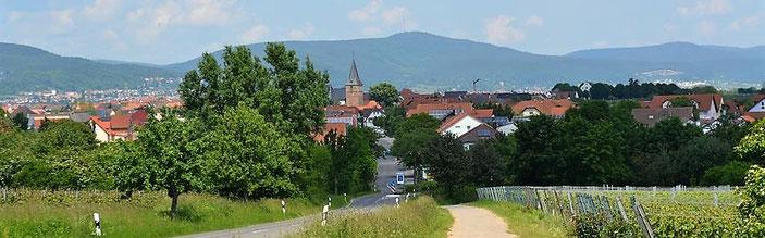 Kirrweiler bietet schöne Ausblicke auf den Haardt-Rand des Pfälzerwaldes.