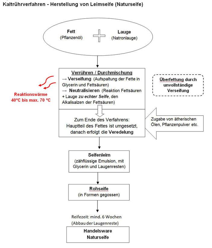 Abbau von Fettsäuren und Glycerin