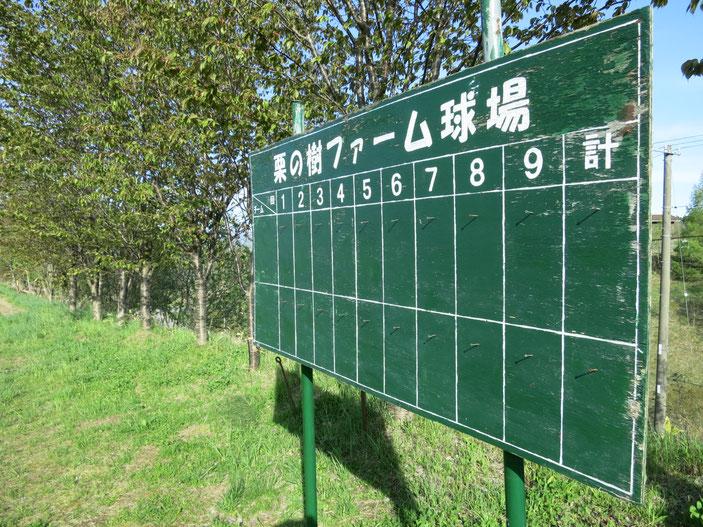 栗山監督 球場