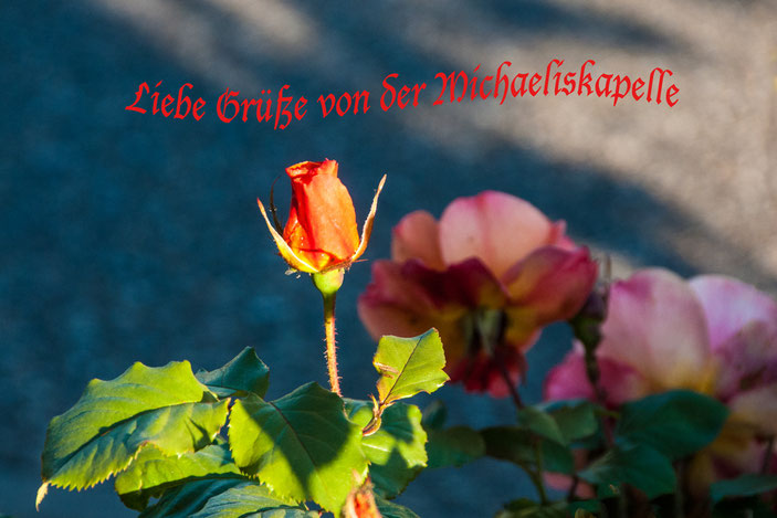 Grußkarte mit Rose, Michaeliskapelle Bad Dürkheim.