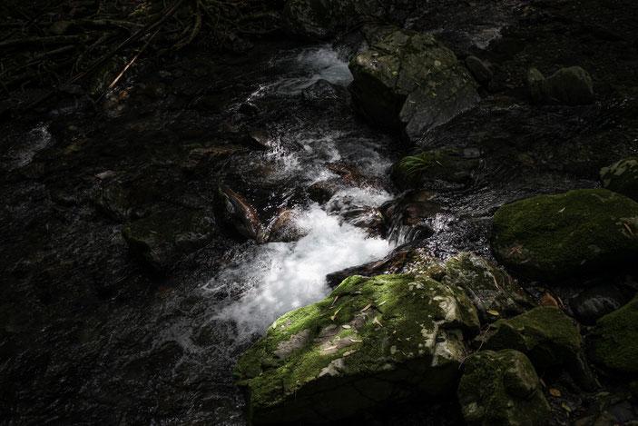 くらがり渓谷 CanonEOS5Dmk2 CanonEF24-70mmF4L photo : toshimasa