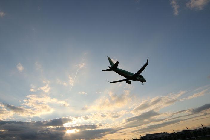県営名古屋空港 CanonEOS8000D SAMYANG14mmF2.8 photo : toshimasa